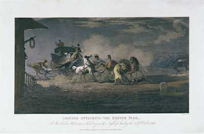 Lioness Attacking the Exeter Mail, At Winterslow Hut near Salisbury, on the Night of Sunday the 20th of October, 1816