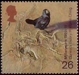 Darwin's Theory of Evolution stamp from The Scientist's Tale issue, 1999