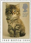 Kitten stamp from RSPCA 150th Anniversary stamps, 1990