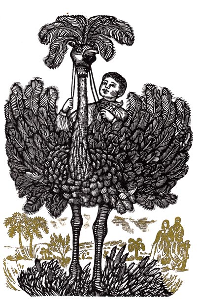 One of David Gentleman's illustrations from The Swiss Family Robinson, 1963