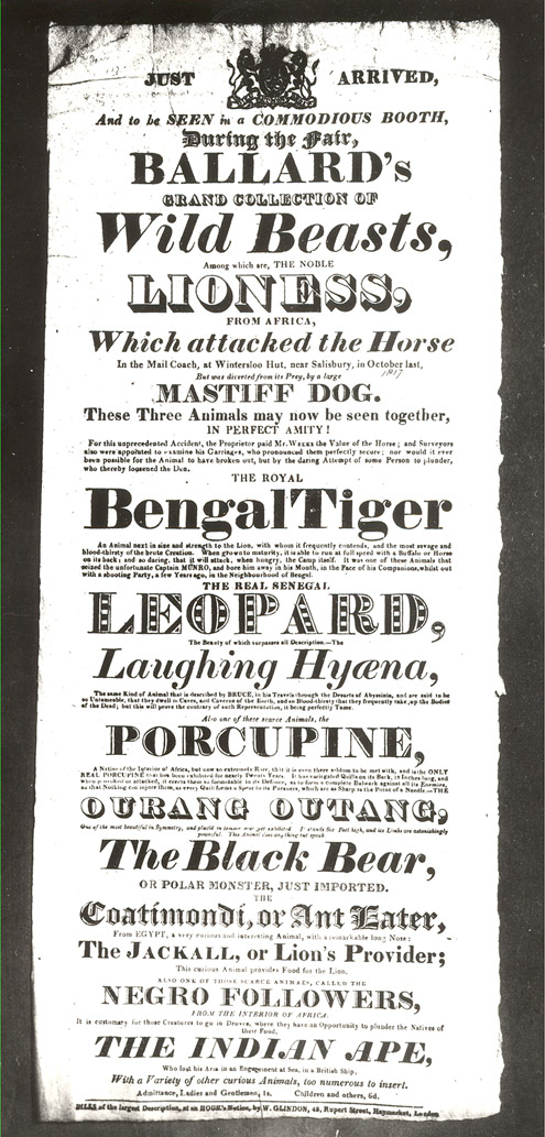 Poster advertising Ballard's Grand Collection of Wild Beasts (P8167)