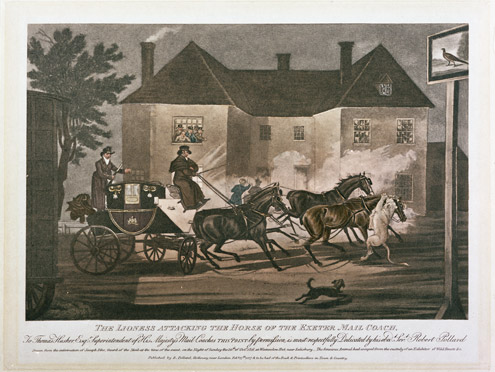 'The Lioness Attacking the Horse of the Exeter Mail Coach' – print by James Pollard, 1817 (2009-0010)