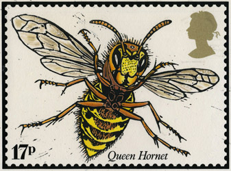 John Norris Wood's Queen Hornet design.