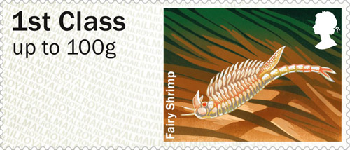 Fairy Shrimp stamp.