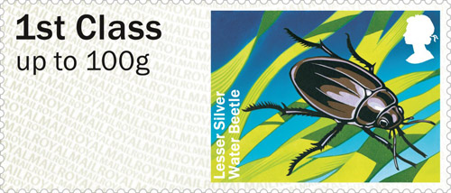 Lesser Silver Water Beetle stamp.