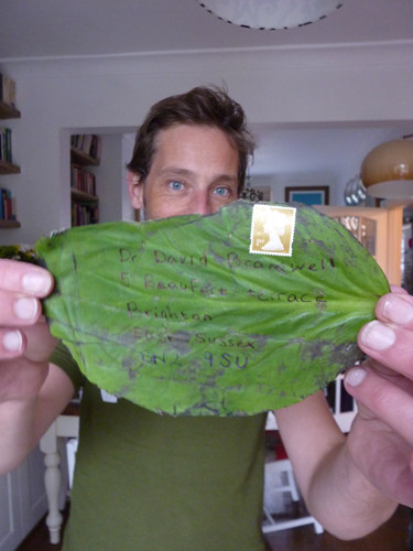 A tropical leaf which was posted to David Bramwell.
