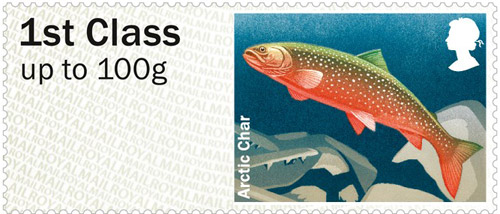 Arctic Char – 1st class stamp from the Freshwater Life: Lakes Post & Go Stamps, issued 25th June 2013.