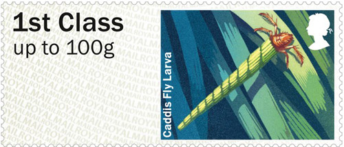 Caddis Fly Larvae – 1st class stamp from the Freshwater Life: Lakes Post & Go Stamps, issued 25th June 2013.