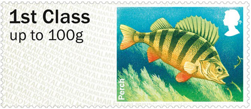 Perch – 1st class stamp from the Freshwater Life: Lakes Post & Go Stamps, issued 25th June 2013.