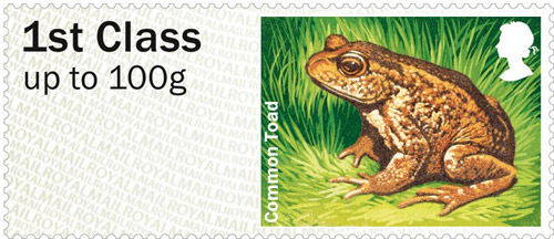 Common Toad – 1st class stamp from the Freshwater Life: Lakes Post & Go Stamps, issued 25th June 2013.