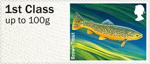 Post & Go Freshwater Life – Rivers: Brown Trout.