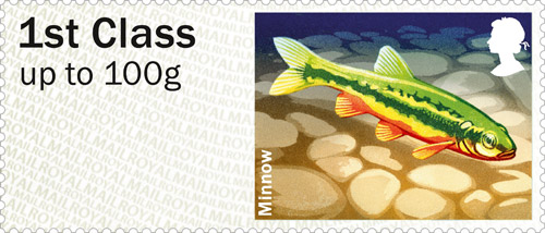 Post & Go Freshwater Life – Rivers: Minnow.