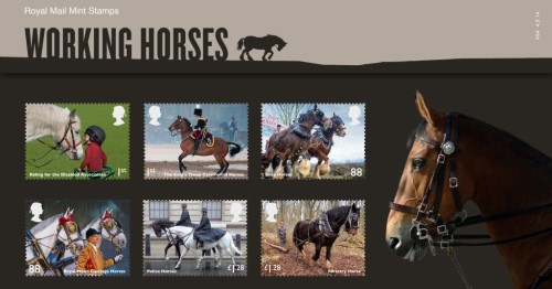Working Horses Presentation Pack